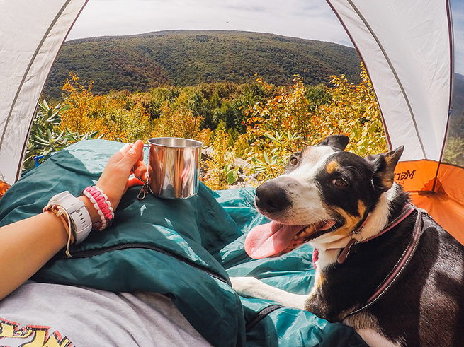 Large_camping_periscope